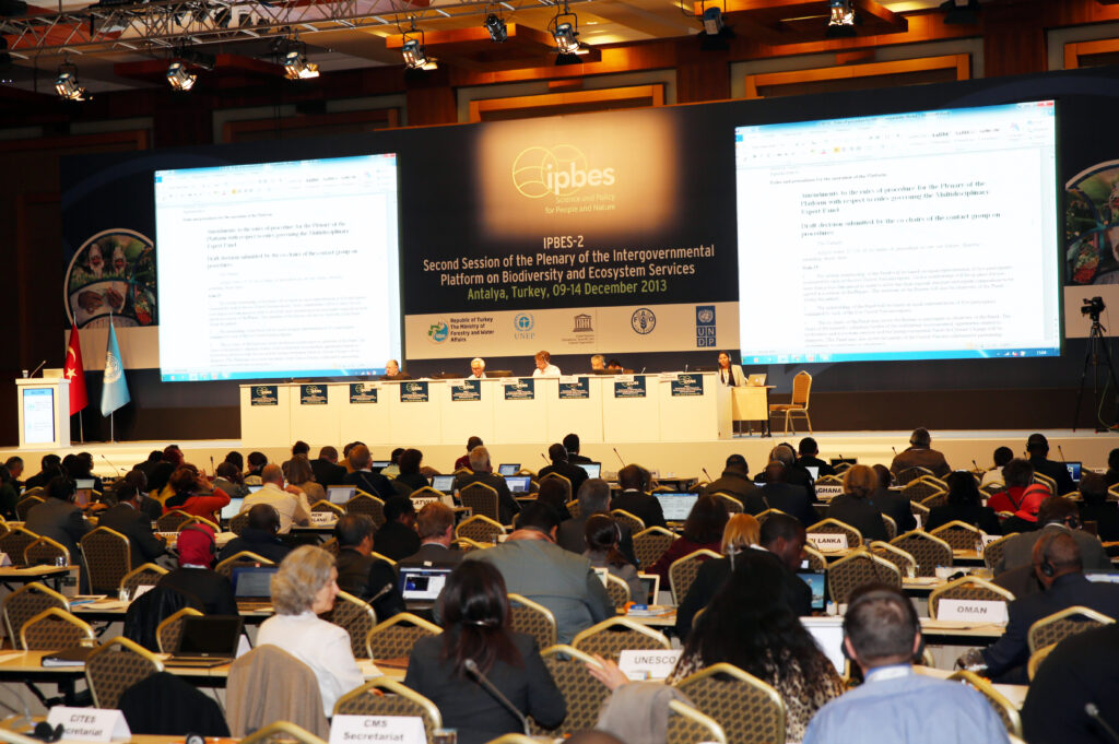 IPBES has now a Conceptual Framework and a Work Plan