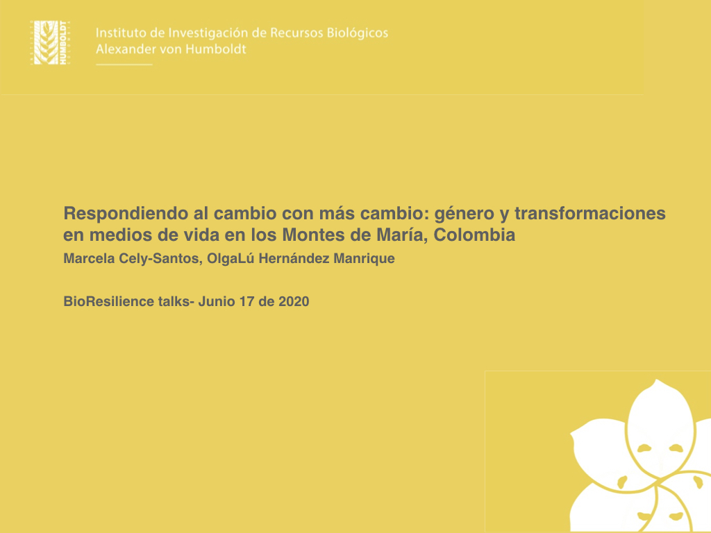 Gender and livelihood transformations in Montes de María, Colombia