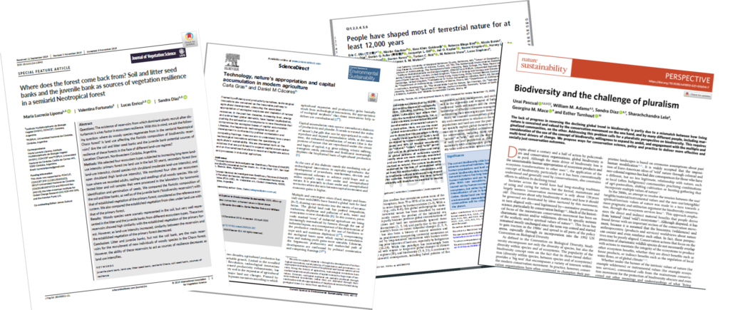 Recent papers published by DiverSus members